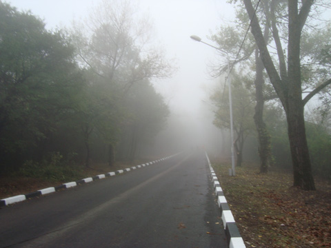 Road to Silent Hill (Mary)